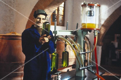 Olive oil production : worker testing the fresh oil