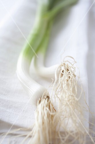 Two spring onions on a linen cloth