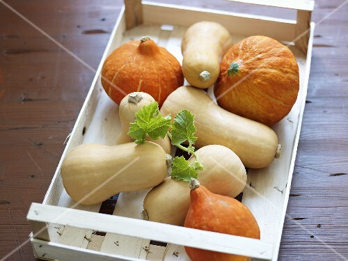 Various squashes in a crate
