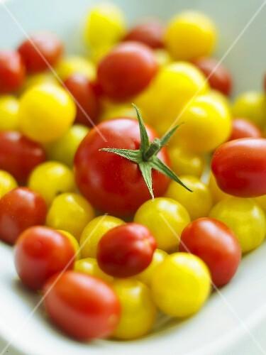 Viele rote und gelbe Kirschtomaten