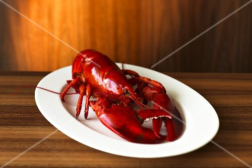 A whole cooked lobster on an elegant wooden surface