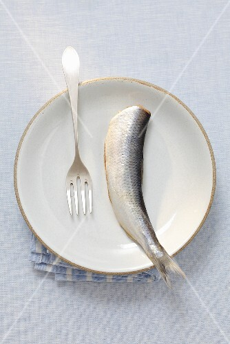 A herring on a plate