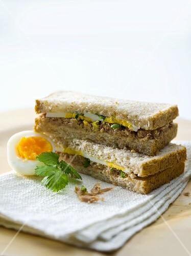 Tuna and egg sandwiches