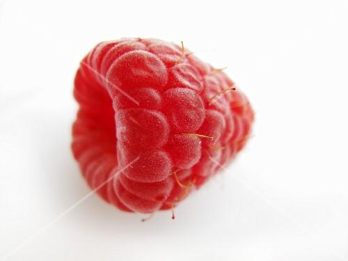 A raspberry (close-up)