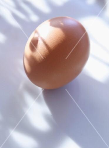 A brown egg