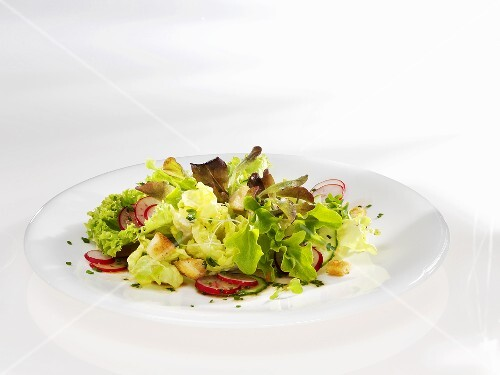 Spring salad with radishes and croutons