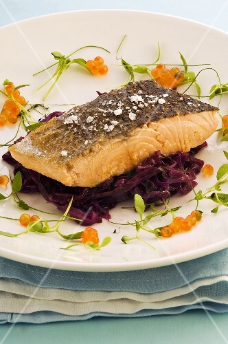 Salmon fillet on red cabbage