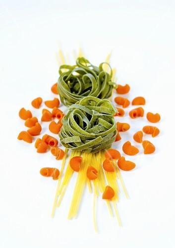 Spaghetti, green tagliatelle and pipe rigate