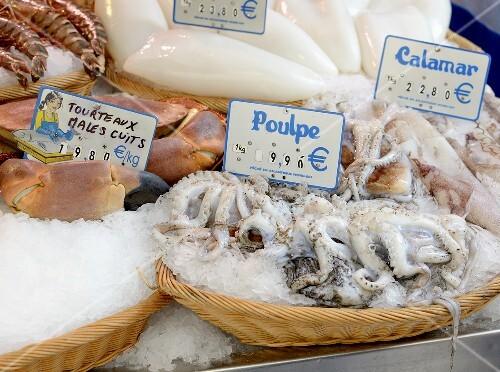 Fresh squid at the market