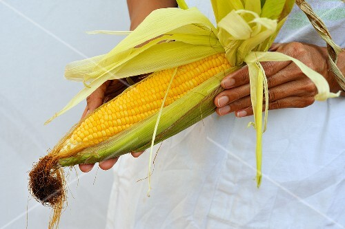 A woman holding a corn cob