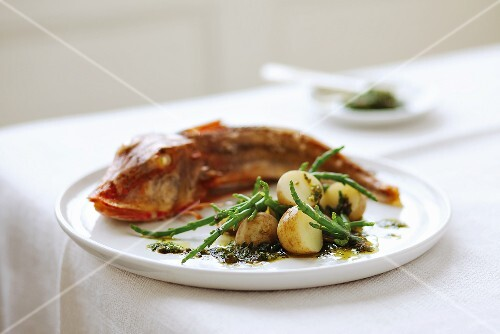 Gurnard with potatoes and glasswort