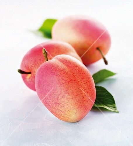 Three Victoria plums (close-up)