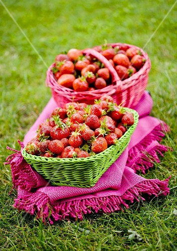 Two baskets of freshly picked strawberries