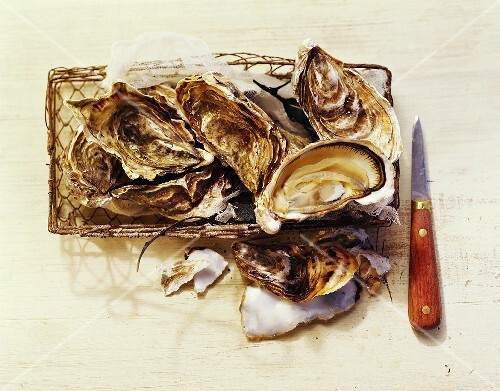 Oysters with knife