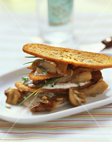 Bread chip lasagne with mushrooms and chive quark