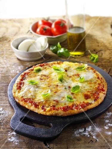 Tomato and mozzarella pizza with basil