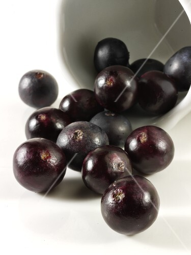 Acai berries (fruit of the acai palm)