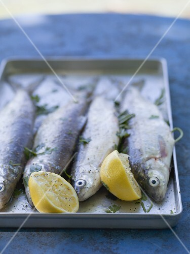 Fresh trout with lemon and parsley, ready for grilling