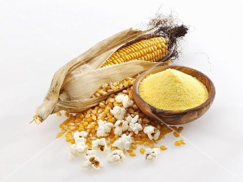 Corncob, corn kernels, cornmeal and popcorn