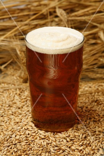 A glass of ale (UK) on malted barley