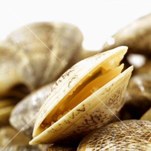 Open clam
