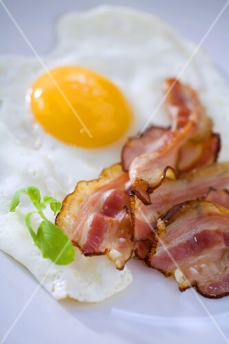 Fried bacon and egg
