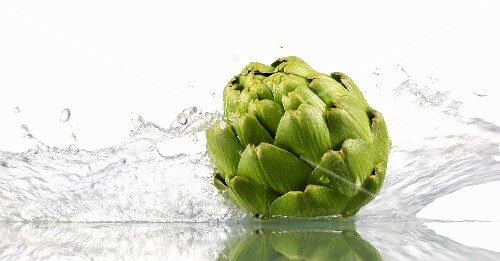 Artichoke with splashing water