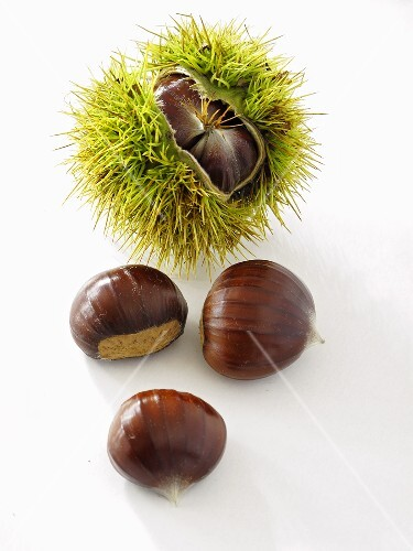 Sweet chestnuts, with and without prickly case