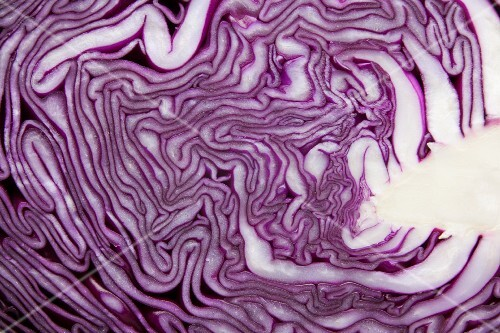 A halved red cabbage (detail)