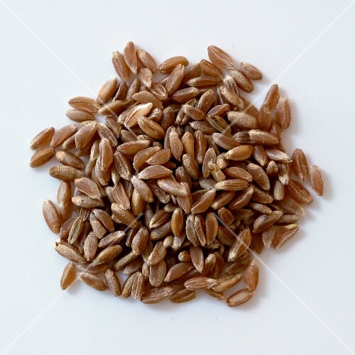 A pile of emmer wheat