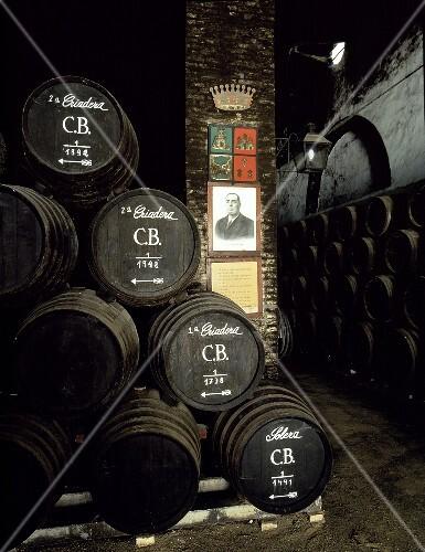Barrels in the wine cellar, Bodega La Monumental, Montilla, Spain