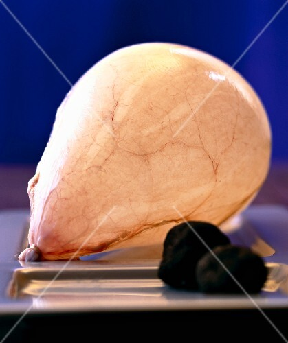 Pig's bladder