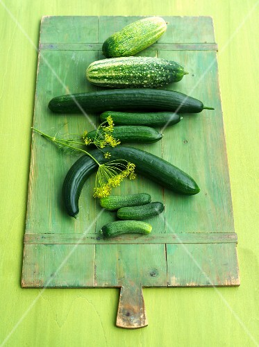 Various types of cucumbers on a green wooden board