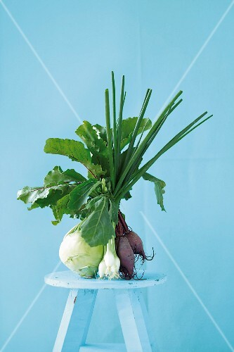 Kohlrabi, spring onions and red turnips on a light blue stool