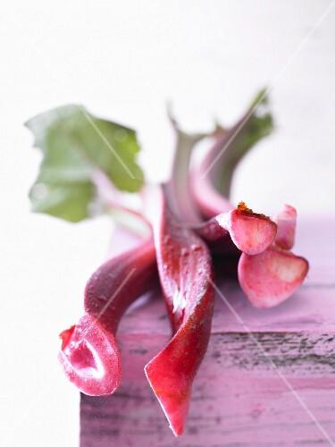 Rhubarb (close-up)