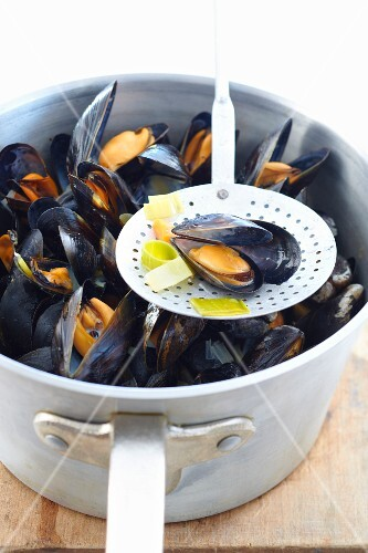 Mussels in a white wine broth being made