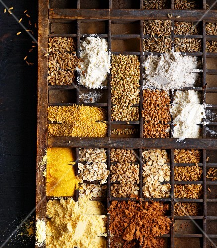 Various grain and flour types in a seedling tray