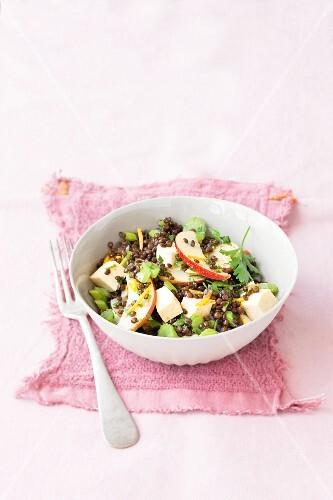 Beluga lentil salad with tofu, celery and apple