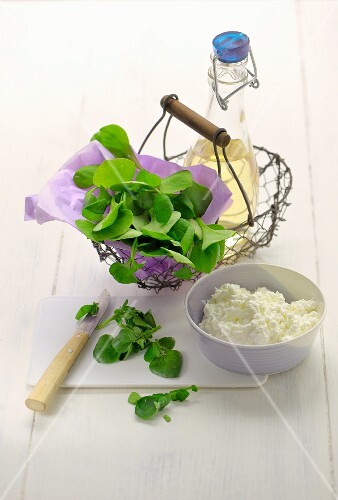 A basket of fresh spinach, vinegar and cottage cheese