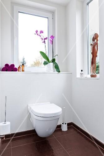 Toiletten Deko.Wc Toilette Fenster Fensterbrett Deko Dekoration Bild