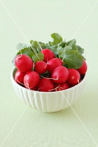 A bowl of fresh radishes