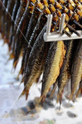 Smoked herring on a rack (Bornholm, Denmark)