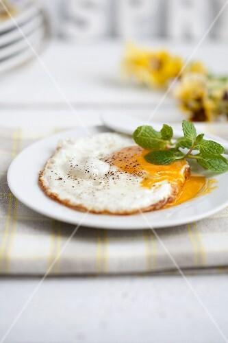 A fried egg on a plate
