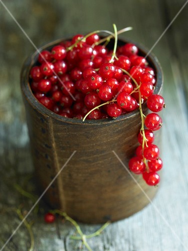 Redcurrants in a cup