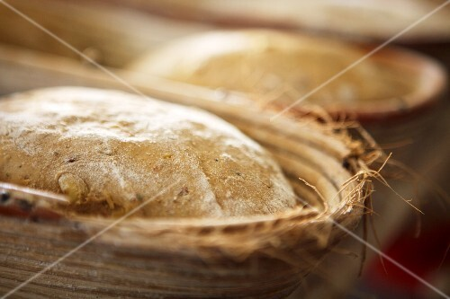 Unbaked bread in baking tins