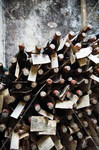 Bottles maturing in the cellar of Fattoria Selvapiana