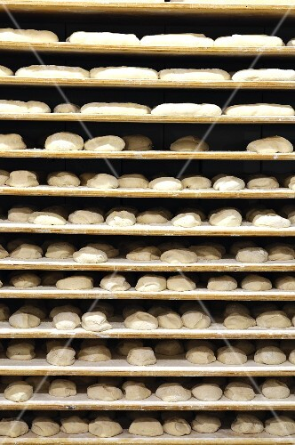 Shelves of unbaked bread in a bakery