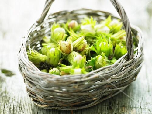 A basket of hazelnuts
