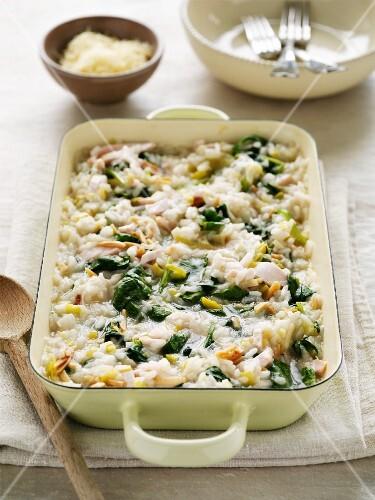 Gratinated chicken risotto