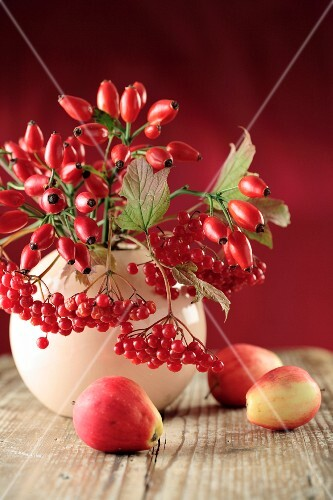 An autumnal bouquet of rose hips and snowball berries